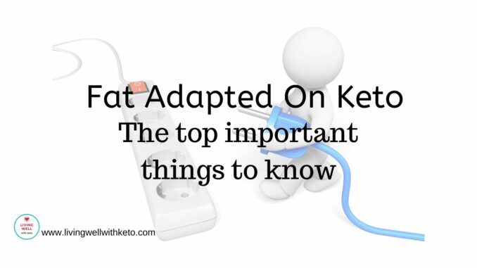 Fat adapted on keto (the top important things to know)