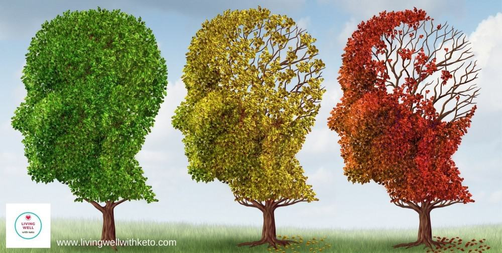 Alzheimer's Disease: Can it be cured?